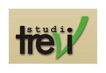 Studio Trevi